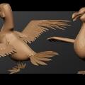 seagull_02.jpg